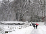 Great Winter Walks in New York City