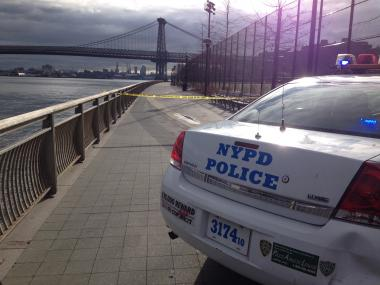 An apparent teenage assailant attempted to sexually assault a 41-year-old woman in broad daylight as she jogged through East River Park just before noon Thursday, Dec. 27, 2012, the NYPD said.