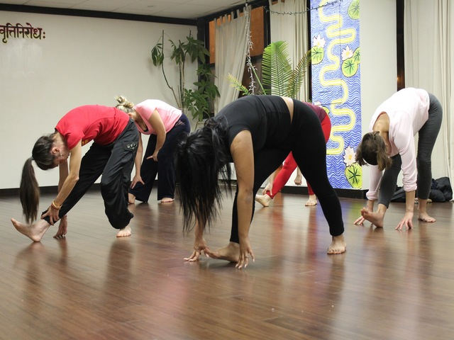 <p>One of the classes at Bamboomoves.</p>