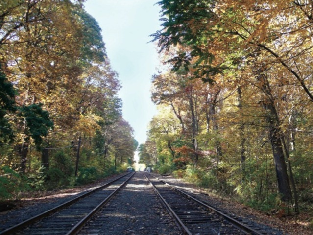 <p>The old Rockaway Line has been abandoned for more than 50 years.</p>