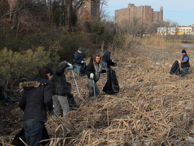 <p>Volunteers pick up trash along the Sherman Creek shorline on Dec. 12, 2012.</p>