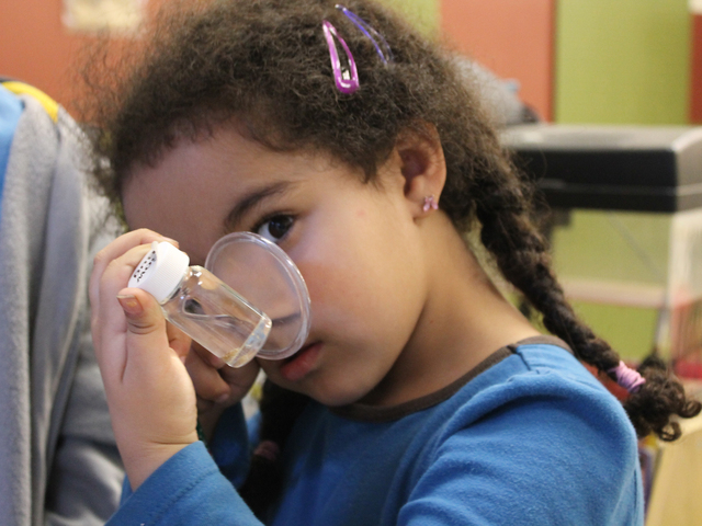 <p>Amena Steenhuis, 5, examines an animal with a magnifying glass at Storefront Science.</p>