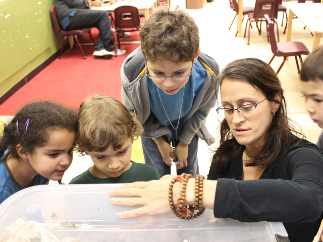 <p>Storefront Science owner Dr. Leonisa Ardizzone explores a compost bin with students.</p>