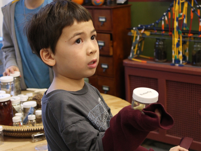 <p>Aiden holds up a butterfly during a food chain scavenger hunt at Storefront Science.</p>