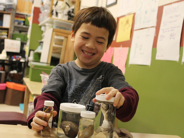 <p>Aiden examines the animals he collected during a food chain scavenger hunt at Storefront Science.</p>