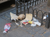 East 86th St. Drowning in Garbage After Doe Fund Pullout, Critics Say