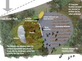 $1M Wetland Proposed for East River Park