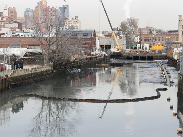 <p>A crowd quickly gathered (far left) on the banks of the Gowanus Canal as word spread that a dolphin was spotted in the polluted waters on Jan. 25, 2013.</p>