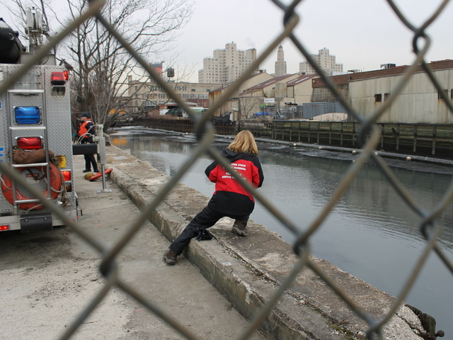 <p>Marine biologist Julika Wocial of the Riverhead Foundation observes the dolphin in the Gowanus Canal on Jan. 25, 2013.</p>