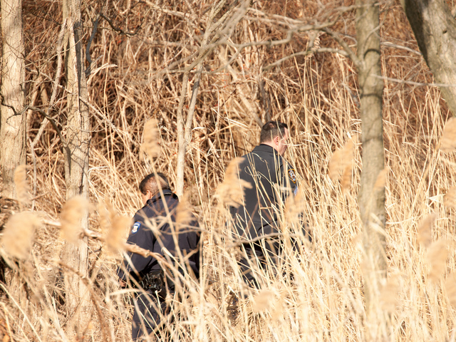 <p>Officers comb the thick brush in search of evidence on Tuesday, Jan. 8, 2013.</p>