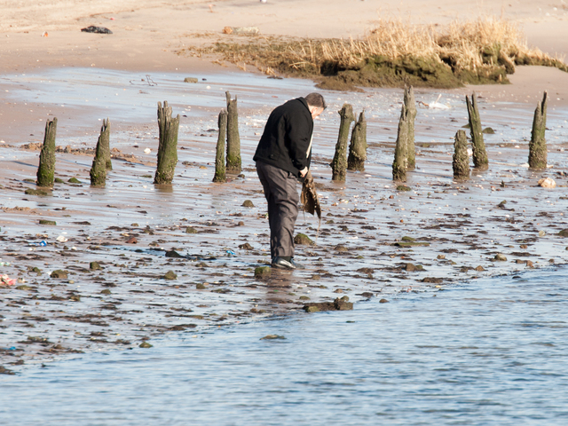 <p>A detective continues to search for evidence at Gerritsen Beach Jan. 8, 2013.</p>