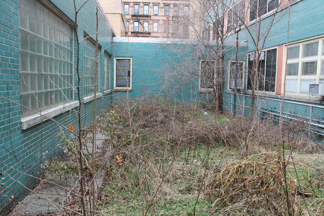 <p>Parents and teachers at P.S. 180 want to turn this unused space into a garden.</p>