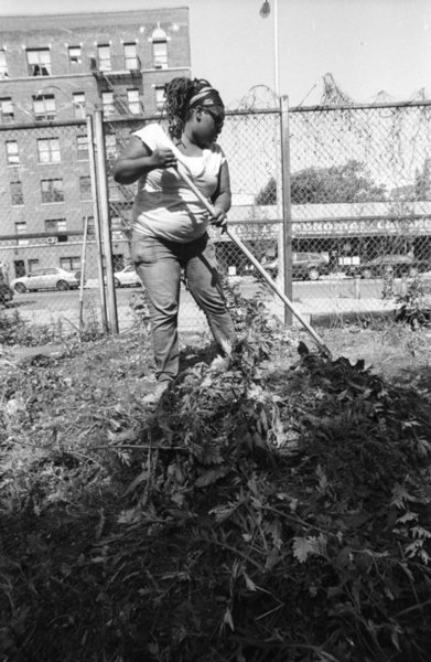 <p>Environmental activist Tanya Fields working in an urban garden.</p>