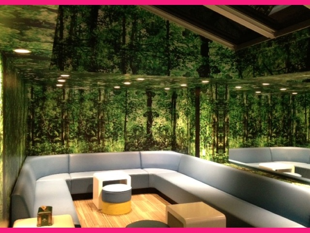 <p>The Manhattan-based frozen yogurt chain 16 Handles&#39;s new Bleecker Street location, celebrating its grand opening Feb. 21, 2013, has a party room that can be reserved.&nbsp;</p>