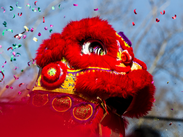 <p>A Chinese dragon on display during the Chinese New Year celebrations in the Sara D. Roosevelt Park, New York City on Feb. 10, 2013.</p>