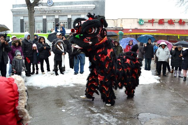 <p>A dragon dancer&nbsp;at the Elmhurst Lunar New Year Festival. This year&#39;s festival features a parade.</p>