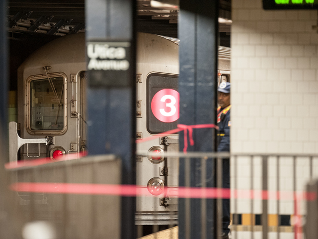 <p>A person was struck and killed by a 3 train at Utica Avenue and Eastern Parkway on Tuesday February 12th, 2013.</p>