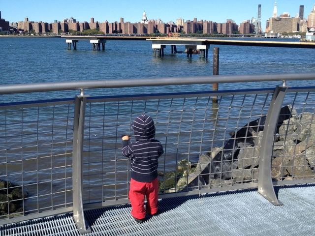 <p>Jane D&#39;Arensbourg&#39;s son George gazed at the East River from Transmitter Park, which opened at the end of summer 2012. D&#39;Arensbourg said the park has been taken over by dog owners who do not leash their pets.</p>