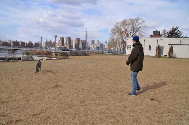 <p>Paul Duey let his dog off its leash in Transmitter Park one recent afternoon.&nbsp;</p>