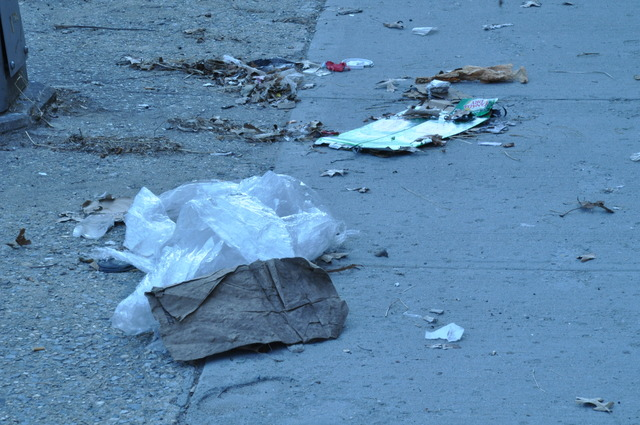 <p>Residents said trash on the sidwalks on West Street is a common occurence.</p>
