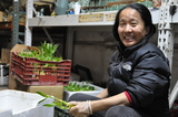 Tibetan Refugees Find Niche Selling Chinese Bamboo in Williamsburg