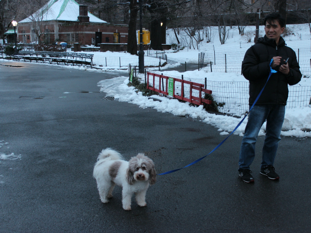 <p>Upper East Side dog owners want off leash-hours to be extended by several hours in the morning and evening.</p>