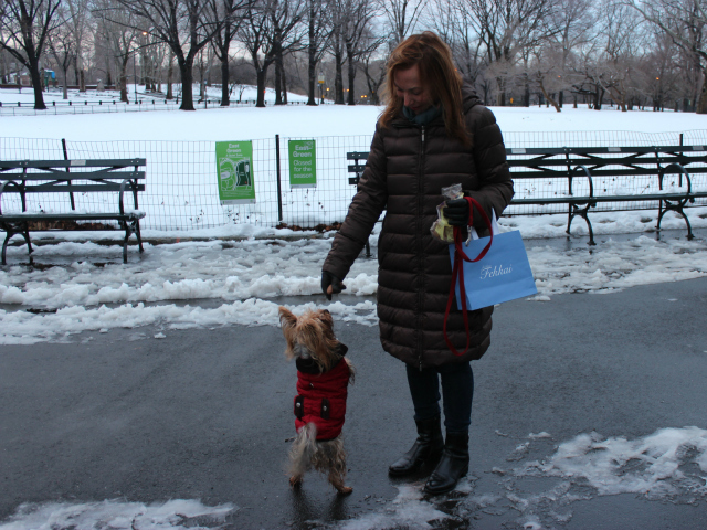 <p>Laura S. said she adopted her Yorkie, Caterina, from a shelter.</p>