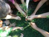 Inwood Yoga Studio Introduces Preschoolers to Gardening and Capoeira
