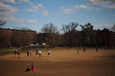 "A recent petition by a group called ""Fort Greener Park"" asks city and state officials to plant grass or place astro turf over Fort Greene Park's ""Dust Bowl."""