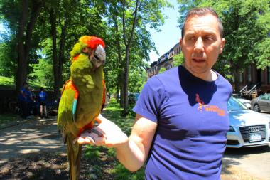 Fort Greene Park is a great spot to bring an exotic pet parrot.