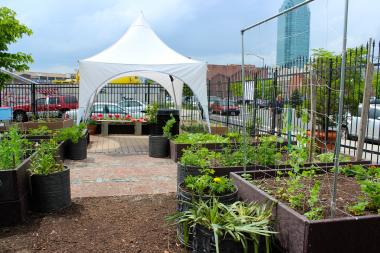 LIC Roots Community Garden's now new space includes a beehive and composting bins.