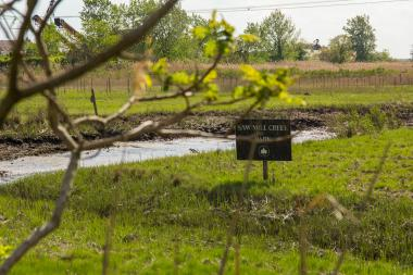 The city's Economic Development Corporation is aiming to restore up to 10 acres of degraded wetland in Saw Mill Creek Marsh.