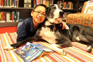 The Nolita library hosts monthly storytime with a 9-year-old Border Collie-greyhound mix to help kids get more comfortable with reading aloud.
