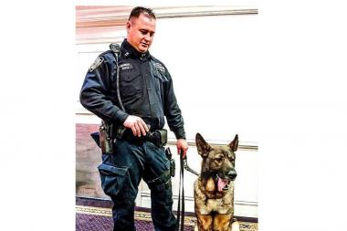 Bear, a police dog in the NYPD's Transit Bureau K-9 Unit, apprehended a woman involved in a subway brawl despite his injuries.