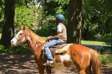 New York City has plenty of stables to ride a horse, or learn to ride one, during the summer.