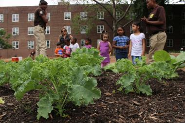 Officials gathered to launch the urban farm at 6 Wolcott St., in Red Hook.