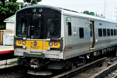 A dog was killed Friday after being hit by an LIRR train.