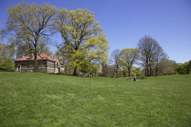 Prospect Park in Brooklyn. A man who allegedly stabbed a dog in the park was arrested there on Aug. 5, 2013, police said.