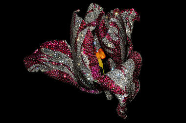 This work is a configuration of pink sapphires, rubies, diamonds, garnets, silver, gold and enamel.
