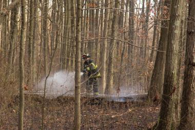 Firefighters worked to extinguish a brush fire at Wolfe's Pond Park on Tuesday, Nov. 19, 2013.