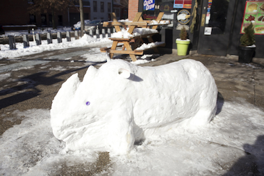 A snow rhino appeared outside of Lafayette Grocery & Dairy in Fort Greene on Jan. 22, 2014.