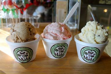 Homemade ice cream shop Malu in Long Island City said it is closing its doors on Feb. 28, according to an announcement on its website.