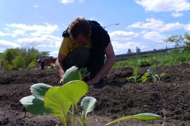 Smiling Hogshead Ranch is an urban farm in Long Island City, built on a plot of unused land owned by the MTA.