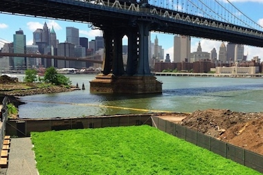John Street Pasture is a temporary field of crimson clover at 1 John St. in DUMBO.