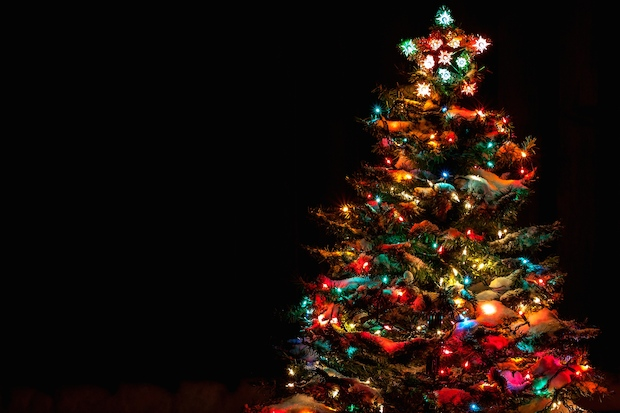 Map 13 Places To See A Christmas Tree Lighting In