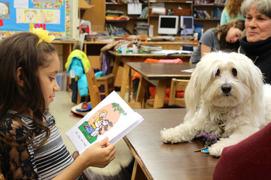 Students at P.S. 163 are part of a program where they read aloud to dogs to improve their reading skills.