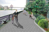 Butterfly Habitat Among Features of 70th Street East River Esplanade Plan