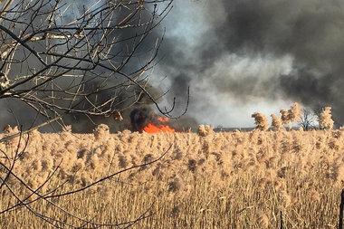 Fire In Oakwood Staten Island