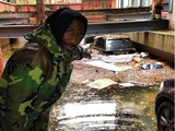 Amar'e Stoudemire Posts Pic of Hurricane-Flooded SUV