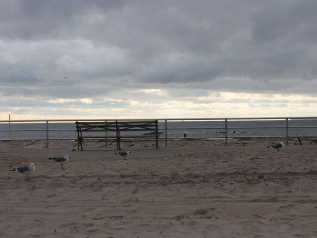 <p>Coney Island Beach after Hurricane Sandy.</p>